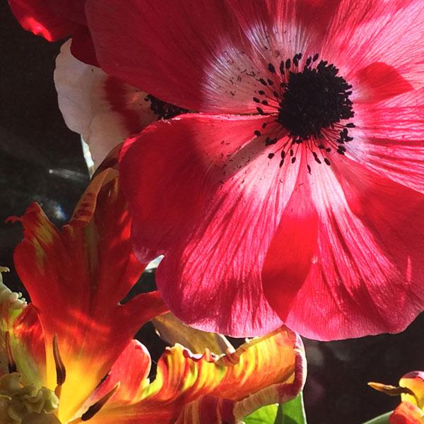 flower-block